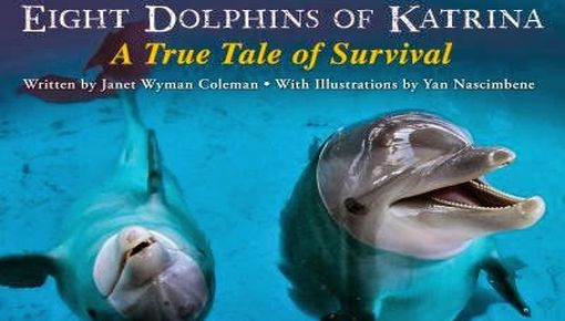 IMMS Presents: Eight Dolphins of Katrina